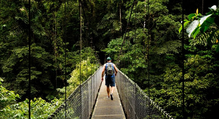 Canopy Walk in Monteverde Cloud Forest