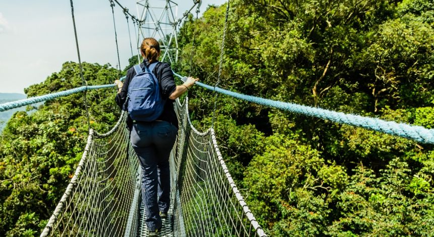 Canopy walk in Rwanda's impenetrable forest