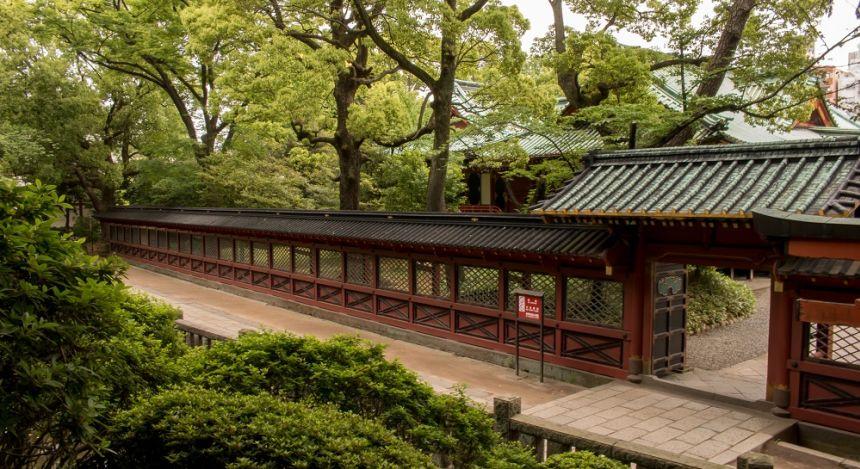 The grounds around Nezu shrine