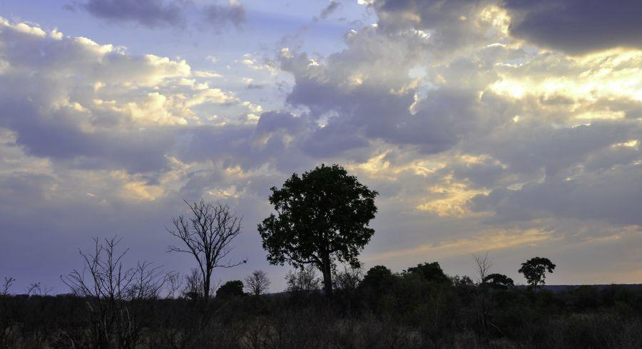 Auf Simbabwe Safaris warten herrliche Sonnenuntergänge