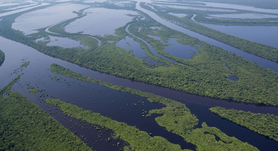 Discover Paradise in Pantanal on your Brazil Tour