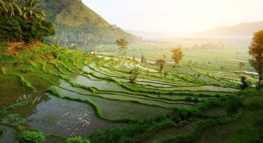 Best time to travel to Indonesia