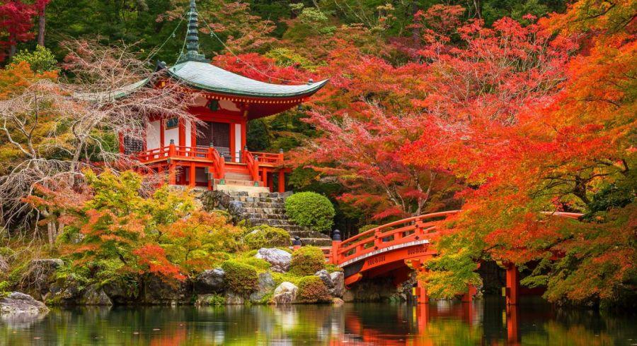 Japan im Herbst