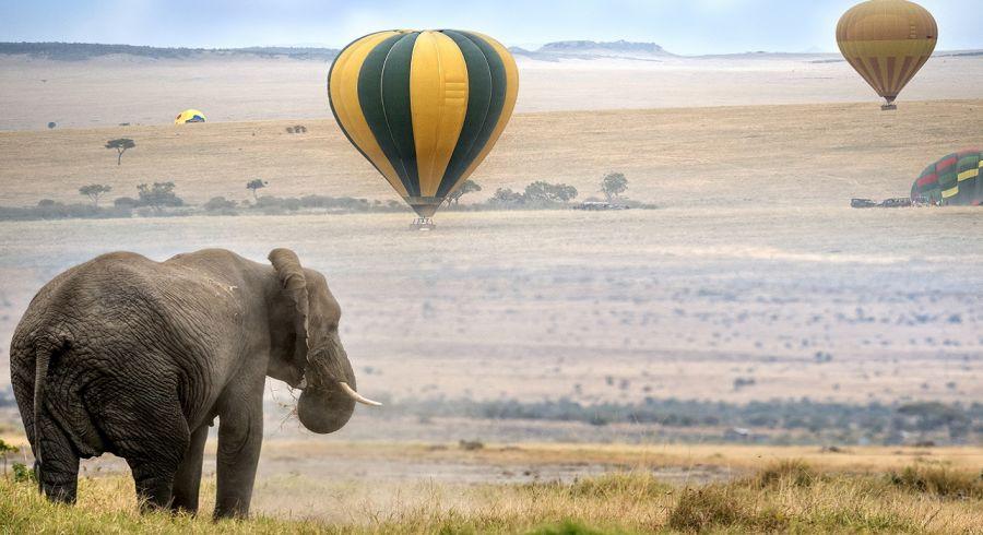 Masai Mara Nationalpark,. Heißluftballon