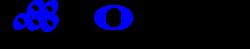 Noetic Strategies, Inc Logo