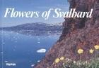 Flowers of Svalbard