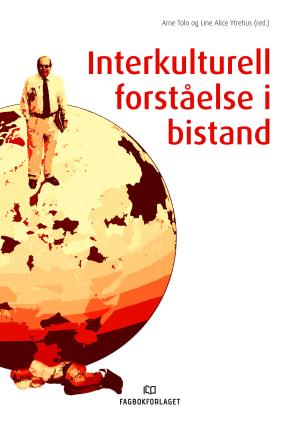 Interkulturell forståelse i bistand