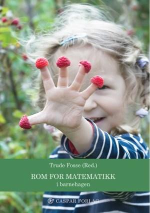 Rom for matematikk - i barnehagen