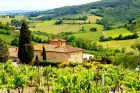 Rolling Hills of Tuscan Countryside in Chianti