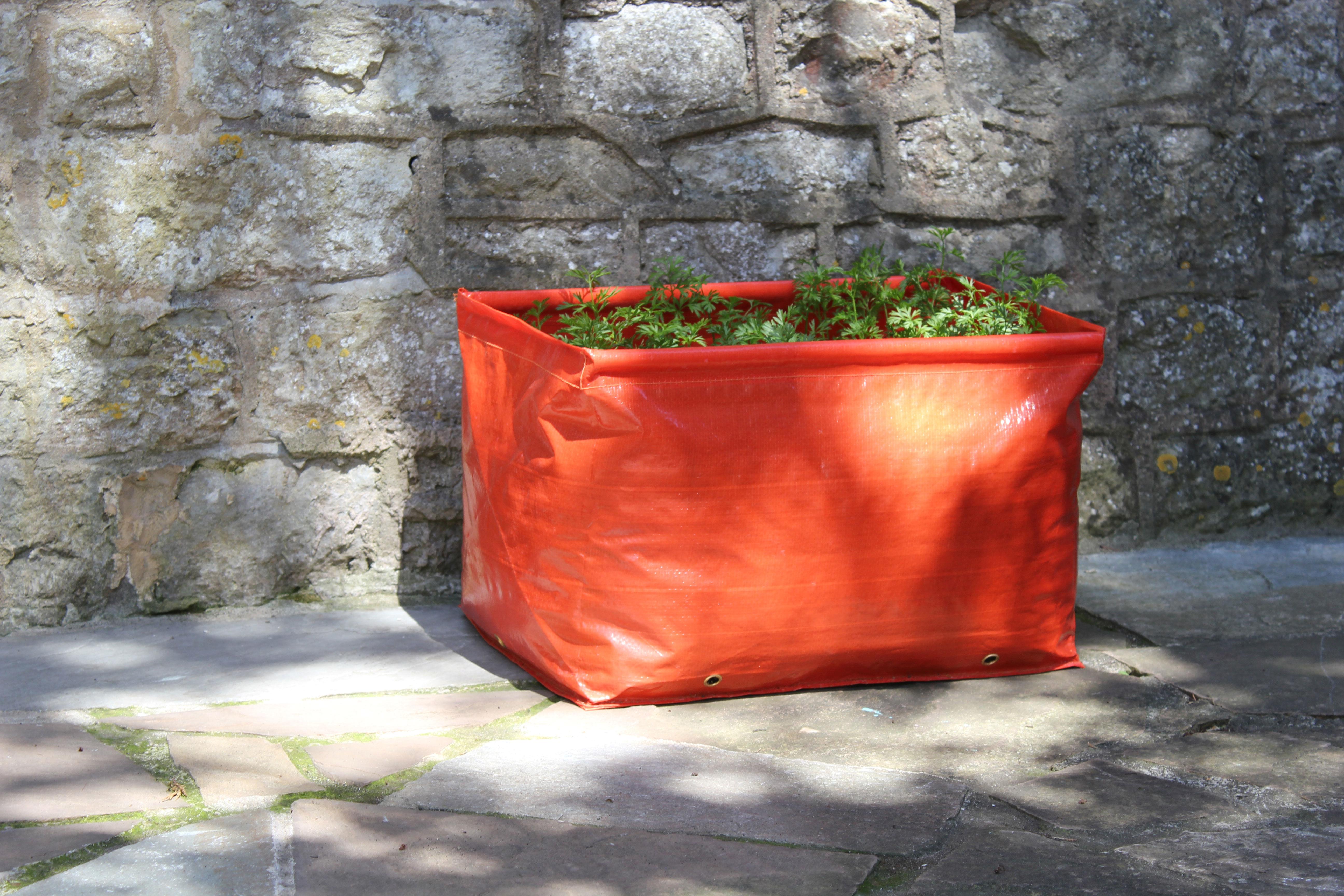 Carrot Patio Planter
