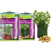 Patio Planters from Haxnicks