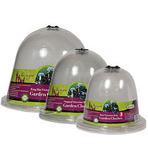 Victorian bell cloches