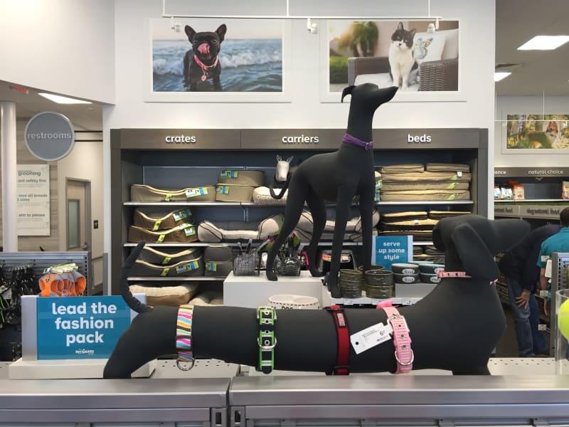 Petsmart Dog Mannequins