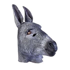 Mask-Donkey