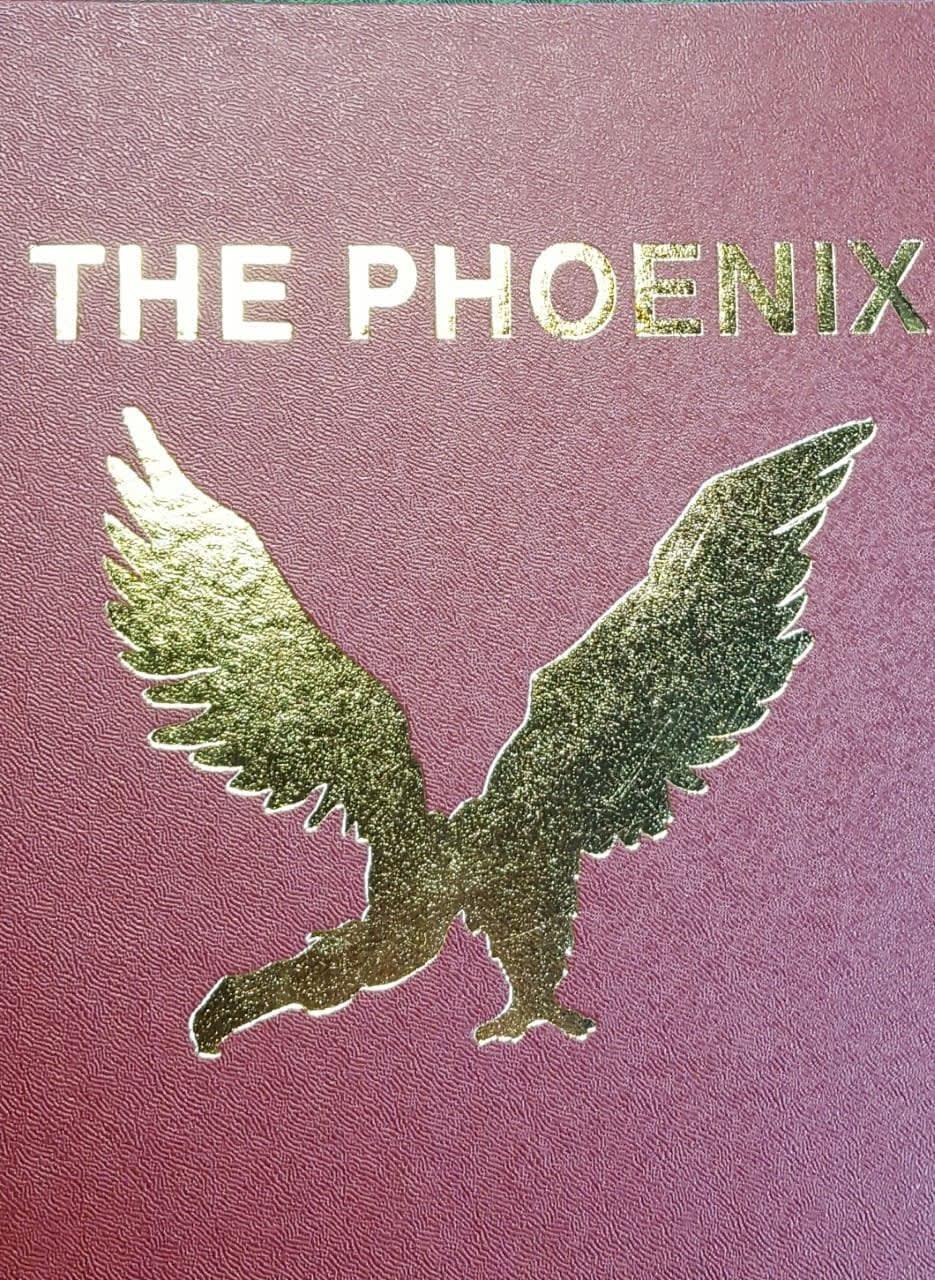 The Phoenix Volumes 201-250