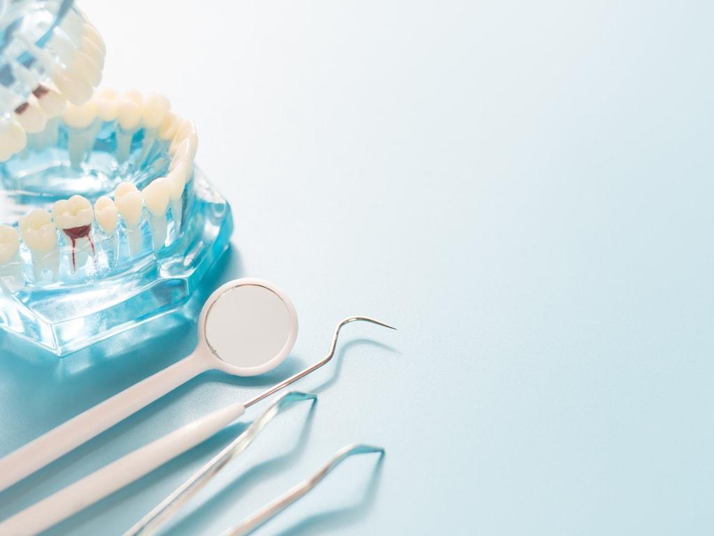 instrument dentaire et machoire plastique transparent
