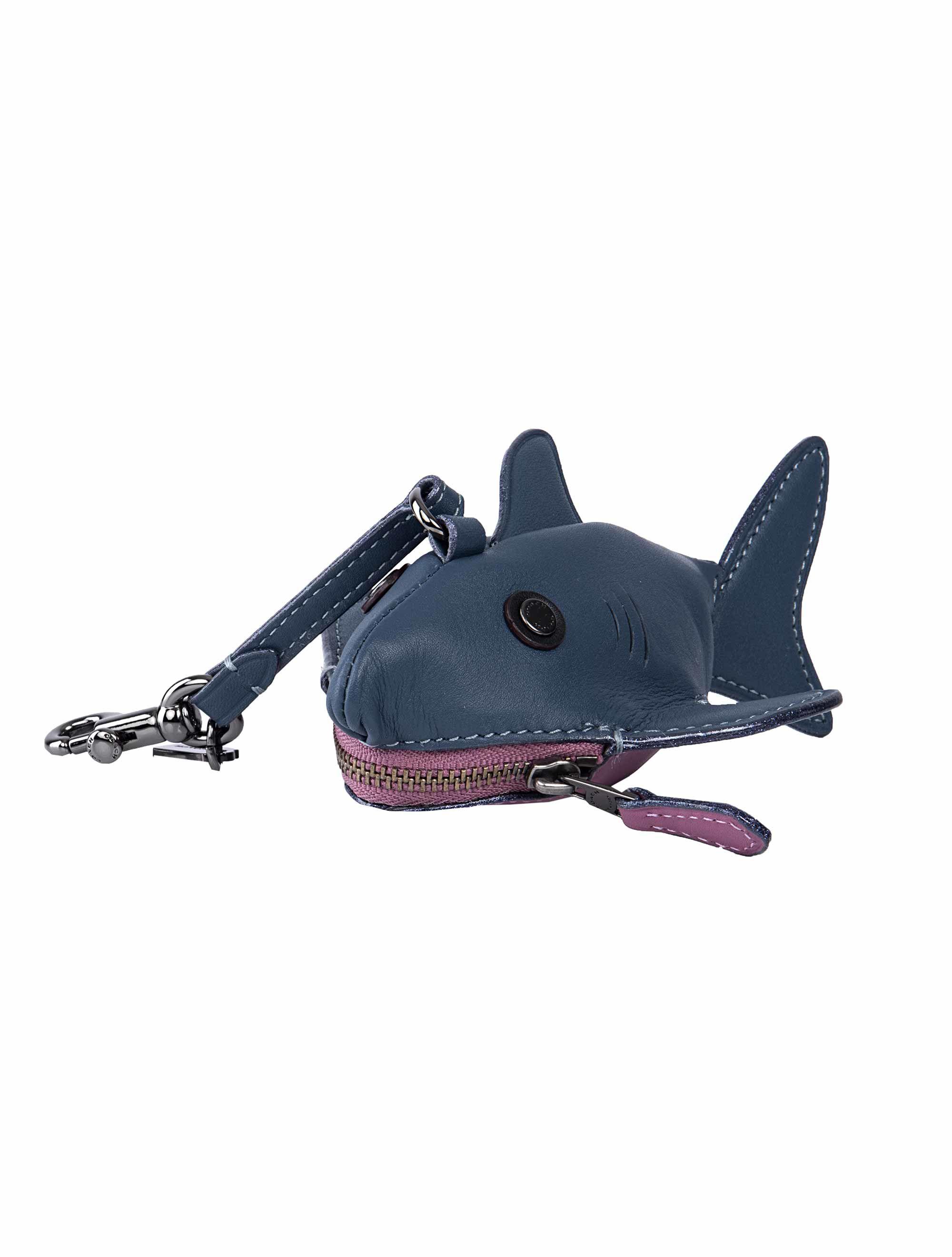 Coach Shark Conny Case