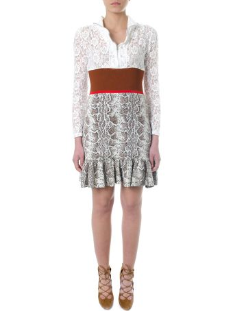 Chloé Lace Dress And Reptile Printed Jacquard