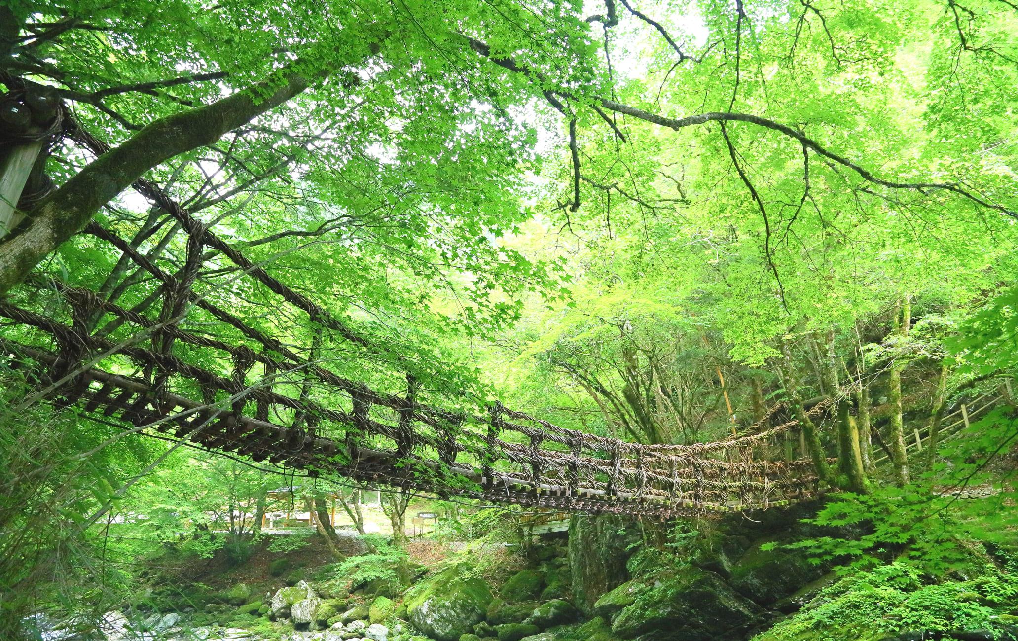 Kazurabashi Bridge