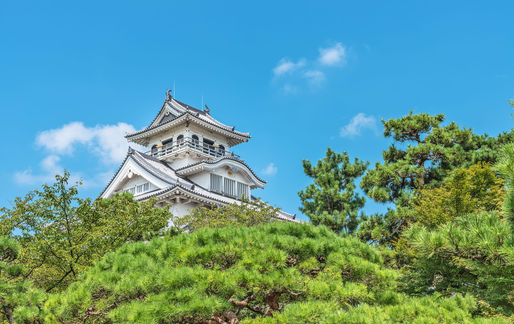 Ruins of Nagahama Castle