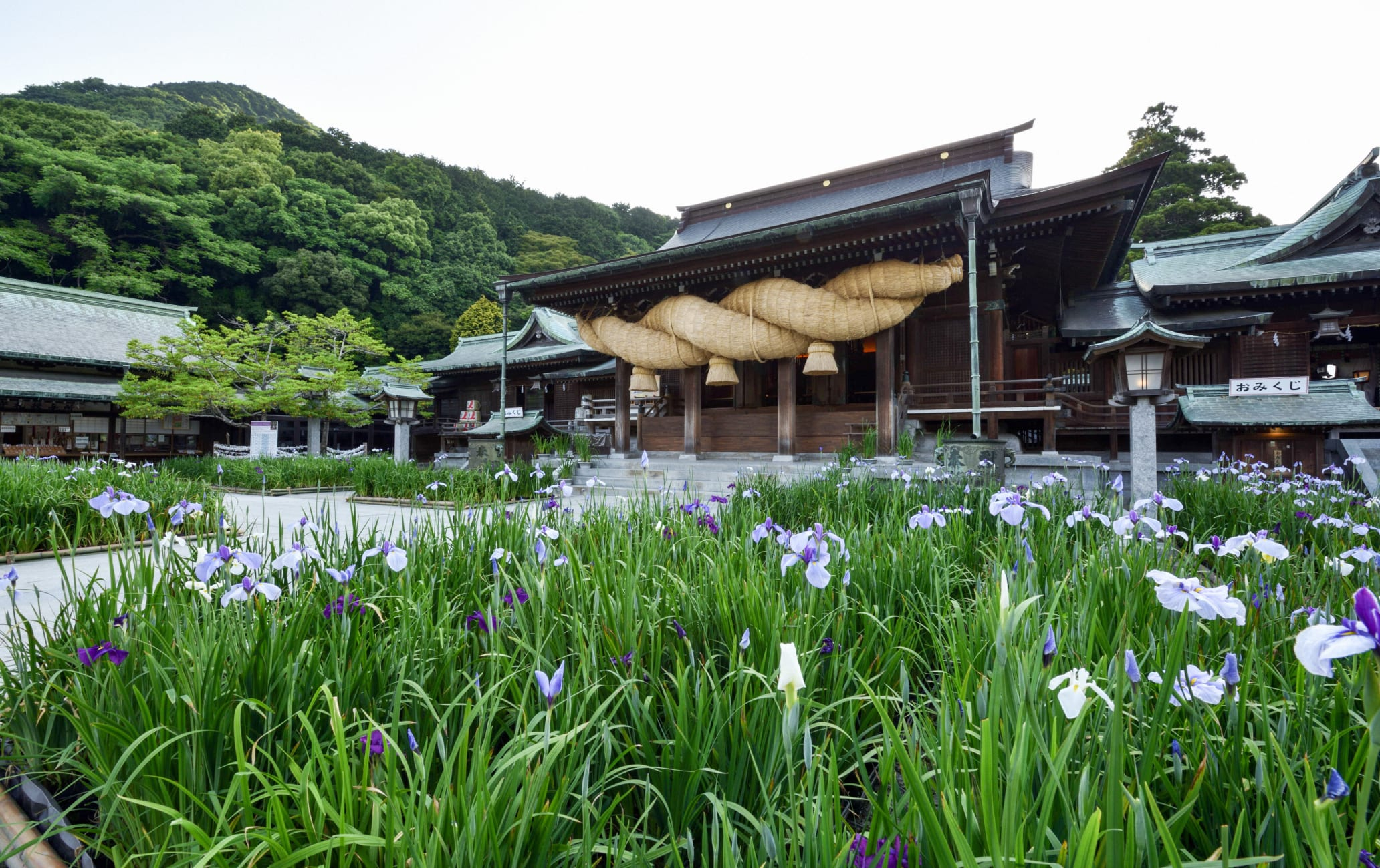 kurume & yanagawa