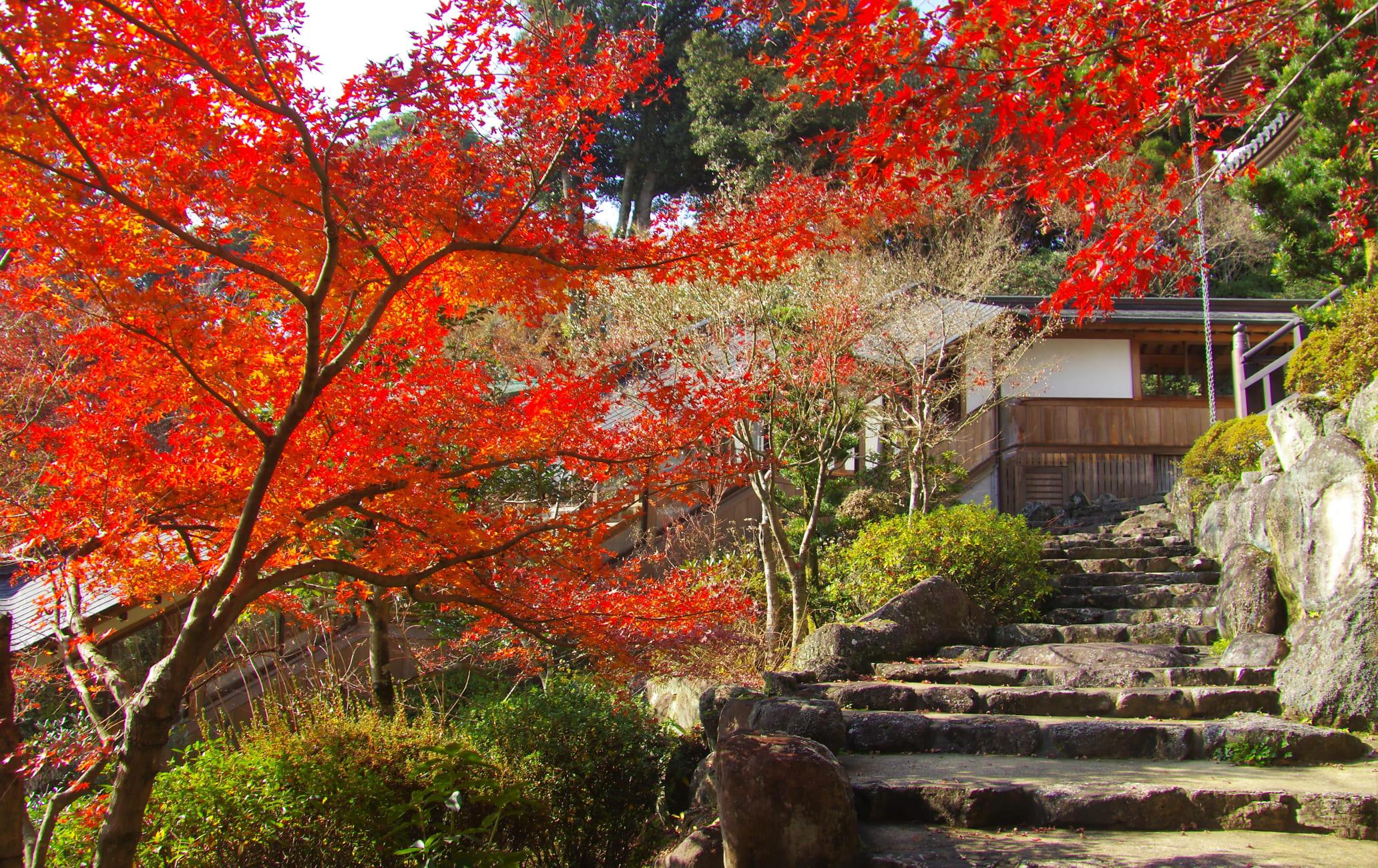 Koyaji Temple