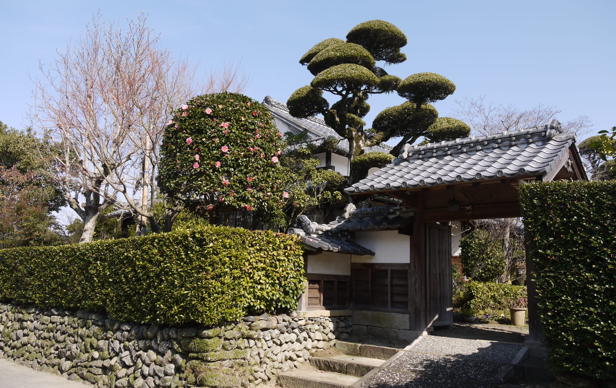 Izumi-fumoto Samurai Residences
