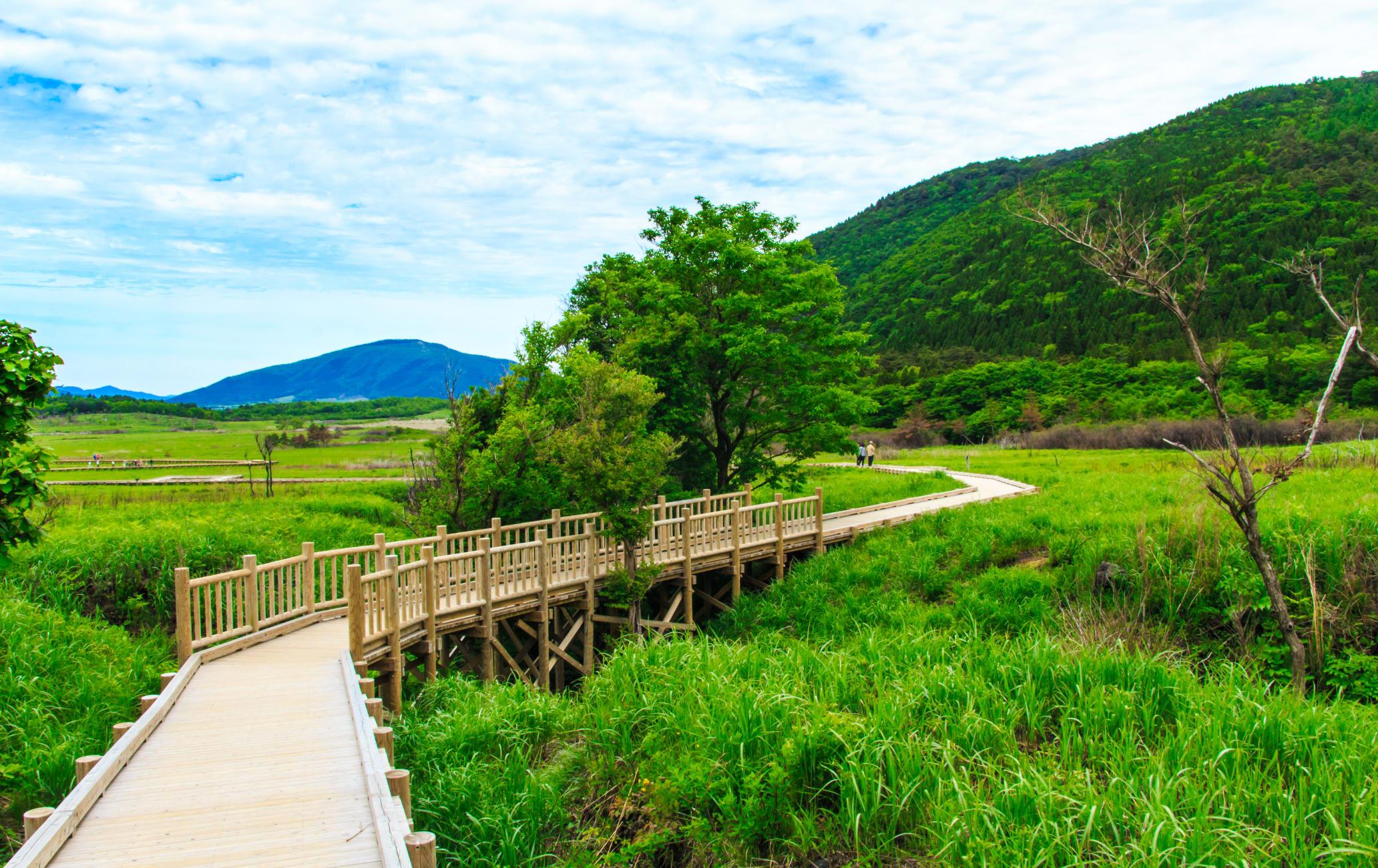 Tadewara Marshland and Bougatsuru Wetland and Chojabaru Visitor Center