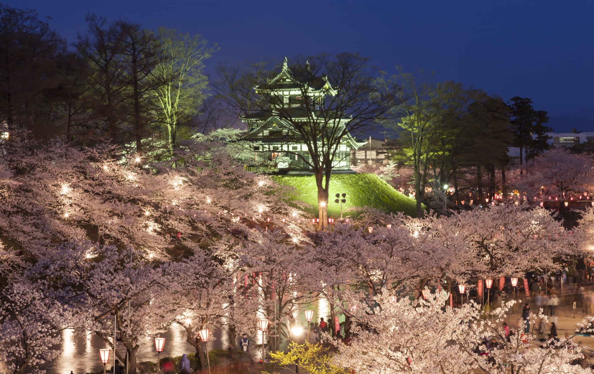 Takada Cherry Blossom Festival