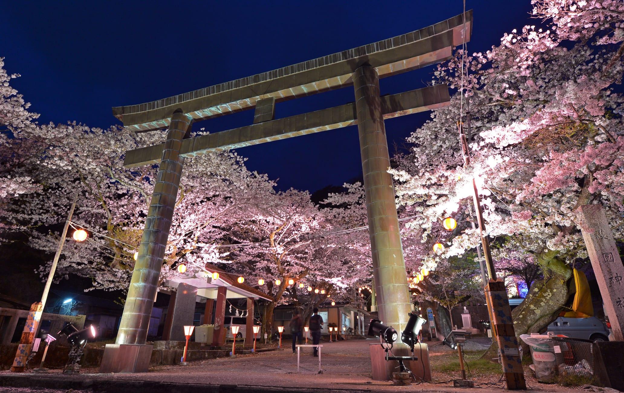 Kinugawa Sakura