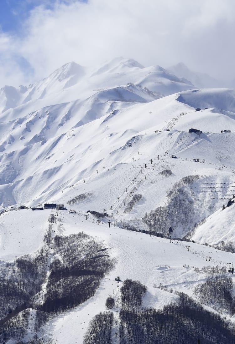 Hakuba Ski Resorts