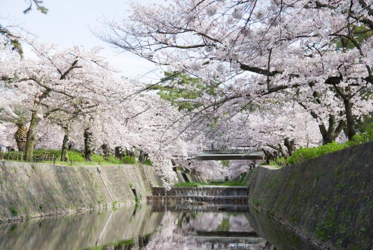 shukugawa park