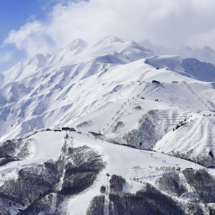 Hakuba Ski Resorts