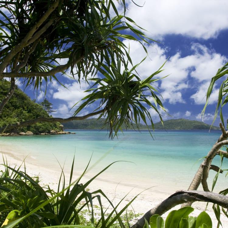 Iriomote Island