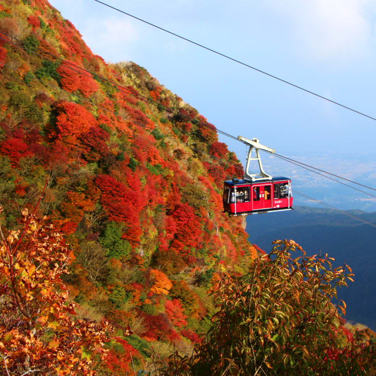 Unzen Nita-touge-red leaves