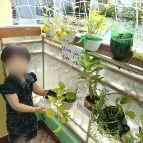 Trường Mầm non Hoa Tulip - Bùi Đình Túy