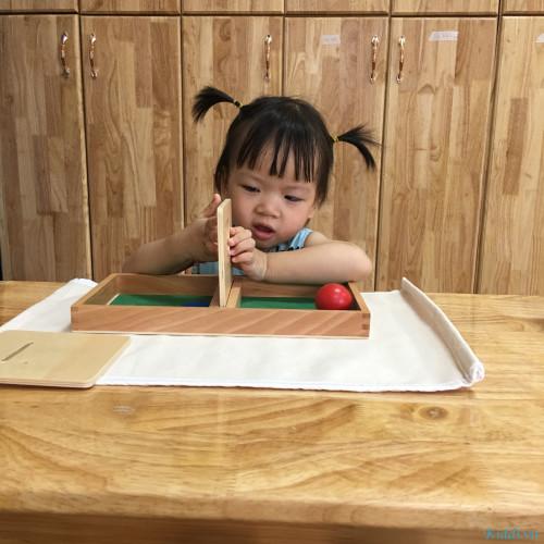 Little Sol Montessori Preschool - Lê Văn Lương (Cơ sở 9)