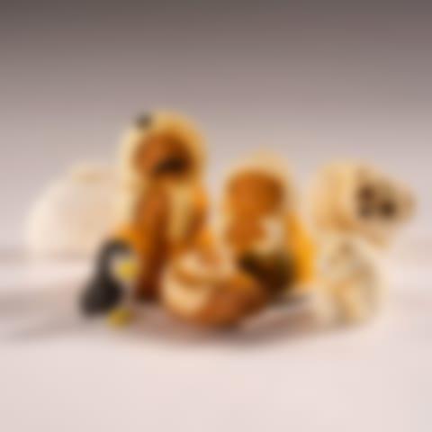 CNC147P Polar Bears