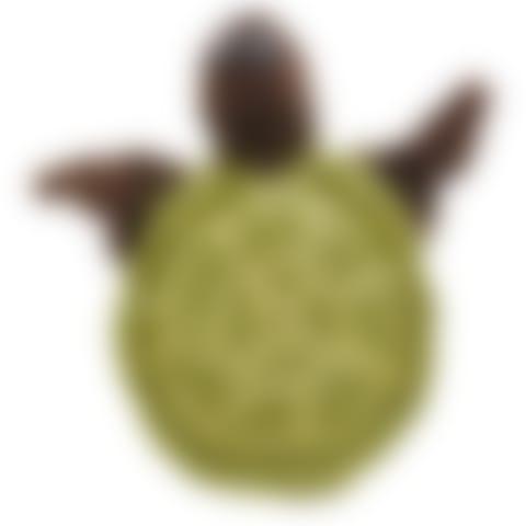 UKP218A Sea Turtle