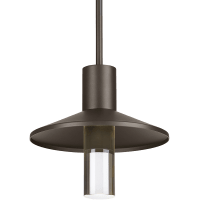 Ash 12 Outdoor Pendant Dome Bronze 3000K 90 CRI 3000K High Output