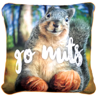 Picture of Avanti™ Go Nuts Microbead Pillow