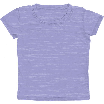 Picture of Burnout Lavender T-Shirt
