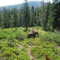 Trail at Indian Lake