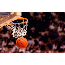 Painel Fotográfico Basketball Origini