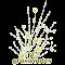 Grassroutes logo