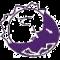 CADEM A.C. logo