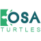 OSA TURTLES logo