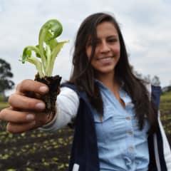 Bogota tours - learn organic gardening