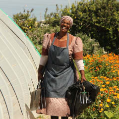Cape Town agriculture projects