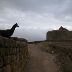 Inca tours - Temple of the Sun